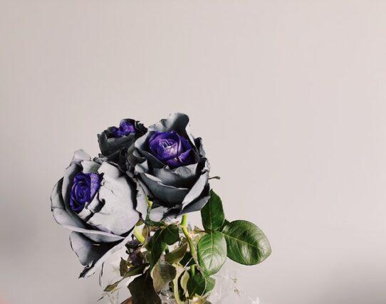 オリジナリティがあるバラ